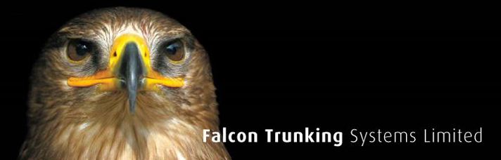 Falcon trunking