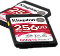 Kingston Technology Canvas React SD Cards