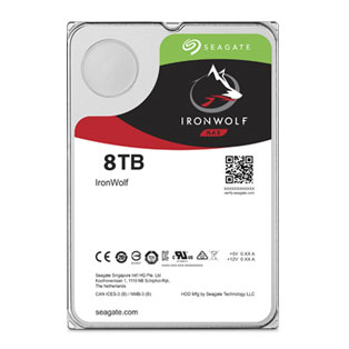 Seagate ironwolf st8000vn0022 8 tb