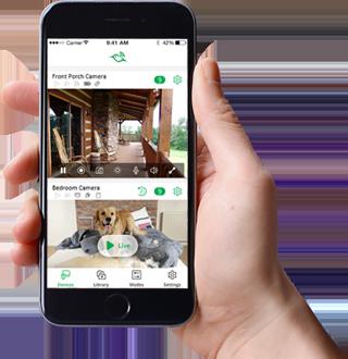 Arlo Phone App